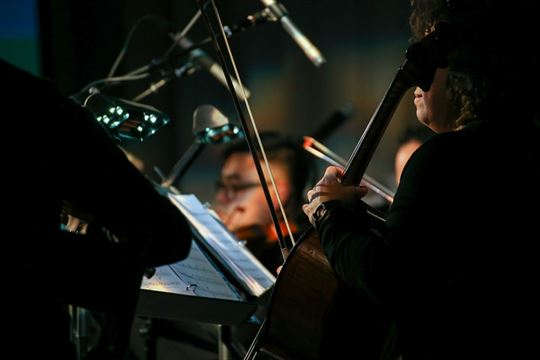 Cello from the string ensemble. Photo by Elisa Zocchi