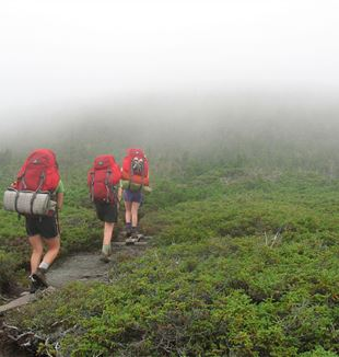 Hiking on Appalachian Trail. Wikimedia Commons