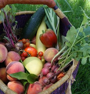 Produce in a basket. CC0